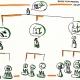 Beeldverwarring in organisaties