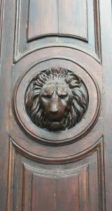 held krachtig leeuw